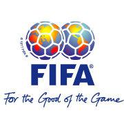 国际足联评论员